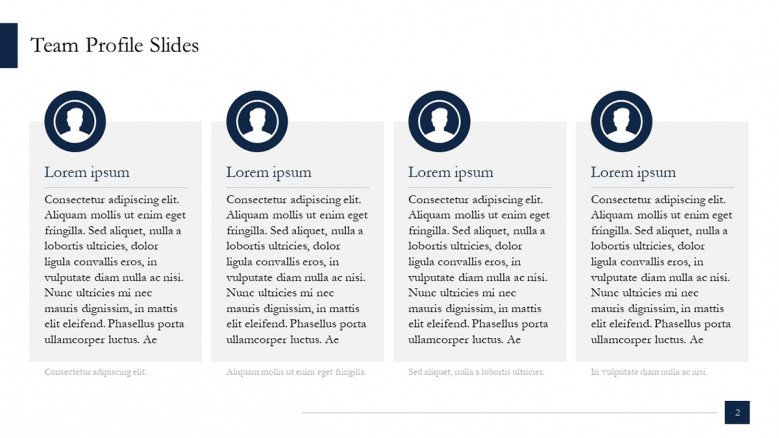 Team Profile Slide in McKinsey Style