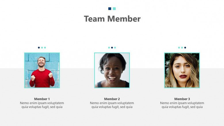 Meet the team slide with images