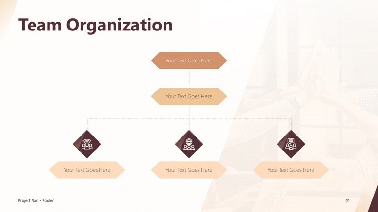 Team Organization Slide for a Project Plan