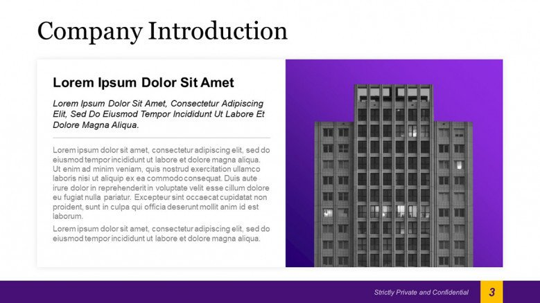 Company Introduction Slide