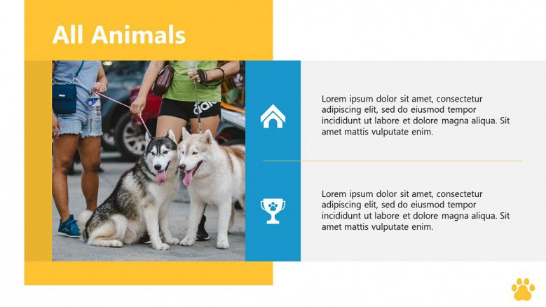 Pet Owners Profile