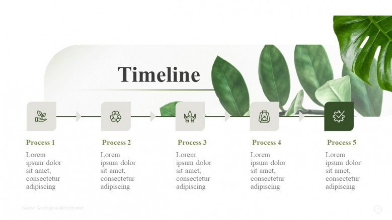 Minimalist Timeline for an environmental Presentation