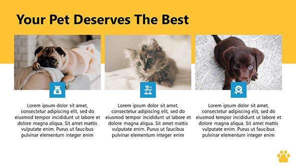 Little Pets PowerPoint Slide